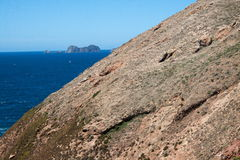 Berlenga海岛-葡萄牙 库存照片