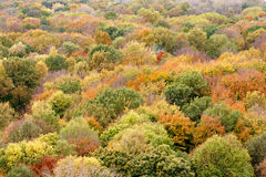 Berlińska jesień Obrazy Stock