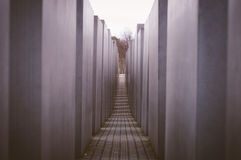 berlin преграждает разбивочный конкретный различный whit памятника холокоста максимумов Германии Стоковое Изображение