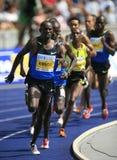 Berlin atletyki złoty istaf międzynarodowego ligi zdjęcie royalty free