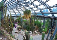berlin botanical garden Stock Photo
