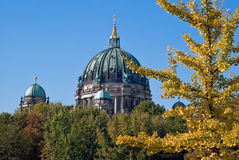 Berlin cathedral behind trees V1. The Berlin cathedral behind green trees in the park Stock Images