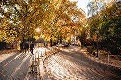 BERLIN, DEUTSCHLAND - 28. OKTOBER 2012: Berlin Cityscape Autumn View With-Sonnenlicht und -bäume Schöne Schatten Stockbilder