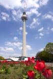 Berlin Fernsehturm. Fernsehturm Berlin am Alexander Platz Stock Photos