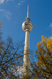 berlin fernsehturm Royaltyfri Bild