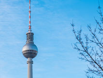 Berlin Fernsehturm TV Tower and Bare Tree Branches Royalty Free Stock Photo