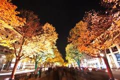 Berlin, Festival der Leuchten lizenzfreie stockfotografie