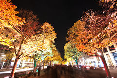Berlin, Festival of Lights Royalty Free Stock Photography