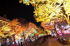 berlin festiwalu światła Zdjęcia Stock