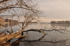 Berlin frozen Rummelsburger lake Royalty Free Stock Photography