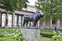 Berlin, Germany-august 27:Lion Statue of Pergamon Museum from Berlin in Germany royalty free stock images