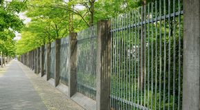 Tree-lined sidewalk with beautifully geometric fence royalty free stock photo