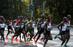 Berlin Marathon Elite Men Group stock image