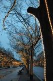 berlin meliny linden unter Fotografia Stock