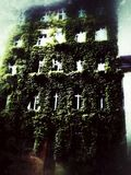 Berlin natur Royaltyfri Foto