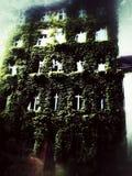 Berlin-Natur Lizenzfreies Stockfoto