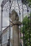 Berlin niedźwiedź Niemcy Obraz Royalty Free