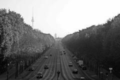 Berlin Panorama met Tiergarten-park royalty-vrije stock fotografie