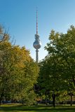 Berlin television tower between trees Stock Photography
