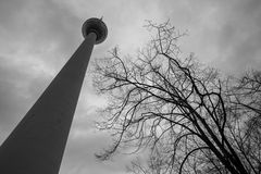 Berlin tv tower in black and white Royalty Free Stock Photo