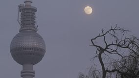 Berlin TV tower street view with moon. Berlin Germany February 2016. Berlin, TV tower street view with moon and tree without leaves in silhouette. Urban winter stock video footage