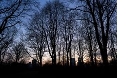 BERLIN TYSKLAND - JANUARI 14, 2017: solnedgång på Tiergarten Royaltyfria Foton