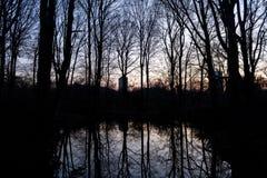 BERLIN TYSKLAND - JANUARI 14, 2017: solnedgång på Tiergarten Arkivfoto