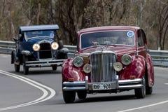 Berlina 1950 di Jaguar MKV Immagine Stock