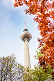 Berliner Fernsehturm tower in Berlin and leaves Stock Photos