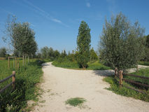 Berlinguer Park in Settimo Torinese Royalty Free Stock Photos