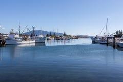 Bermagui river marina wharfs Royalty Free Stock Photography