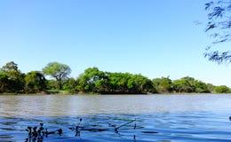 Bermejito rzeka Obrazy Stock
