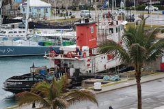 bermuda Photo stock