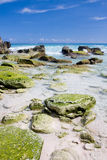 Bermuda beach. View of a deserted beach in Bermuda royalty free stock photography