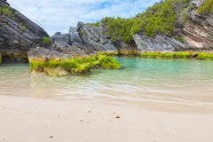 Bermuda Beach Stock Image