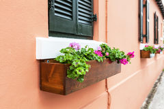 Bermuda Flower Boxes Stock Images