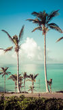 Bermuda islands coast Stock Photography