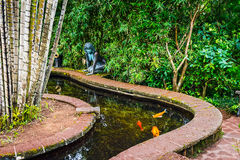 Bermuda Koi Pond Lizenzfreies Stockfoto
