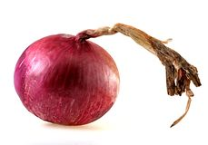 Bermuda Onion Stock Photography
