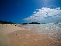 Bermuda pink sand beach, fisheye Stock Image