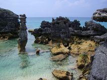 Bermuda rocky shore Stock Photos