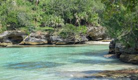 Bermuda shoreline stock image