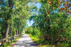 Bermuda Walkway Royalty Free Stock Images