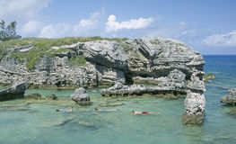 Bermudas que bucean Imágenes de archivo libres de regalías