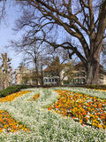 Bern, spring. Bern, Switzerland - street in spring Royalty Free Stock Photos