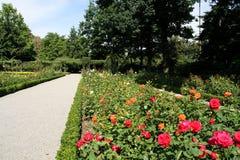 Bern, Switzerland. Famous rosarium (Rosengarten) in the botanical garden royalty free stock photography
