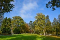 Autumn city park, amazing fall colors royalty free stock photo