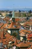 Berna en cierre para arriba Fotografía de archivo