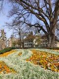 Berna, primavera Fotos de archivo libres de regalías
