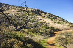 Bernardo Mountain Hiking Trail Poway San Diego County California royalty free stock photography